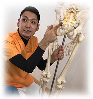 骨盤矯正1